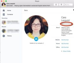 profile-with-skype-name-blurred
